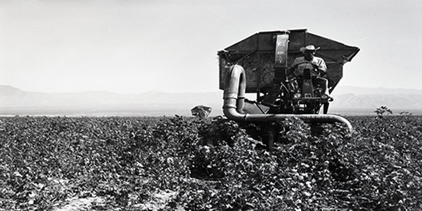 Agriculture: Pahrump Valley, 1962